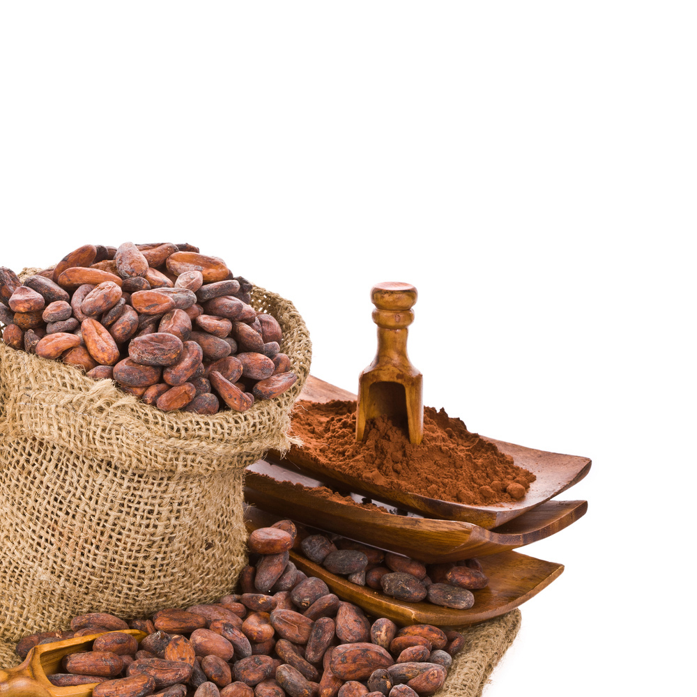 The History of Chocolate: Central America