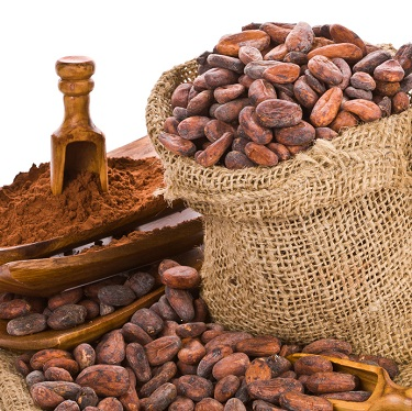 Twelve More Facts You Might Not Know About Chocolate (Part 2)